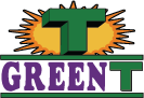 Green T Windows